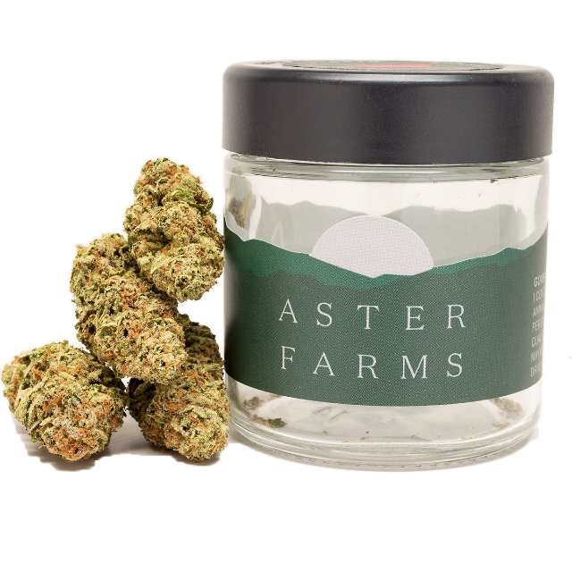 ASTER FARMS ROYAL HIGHNESS